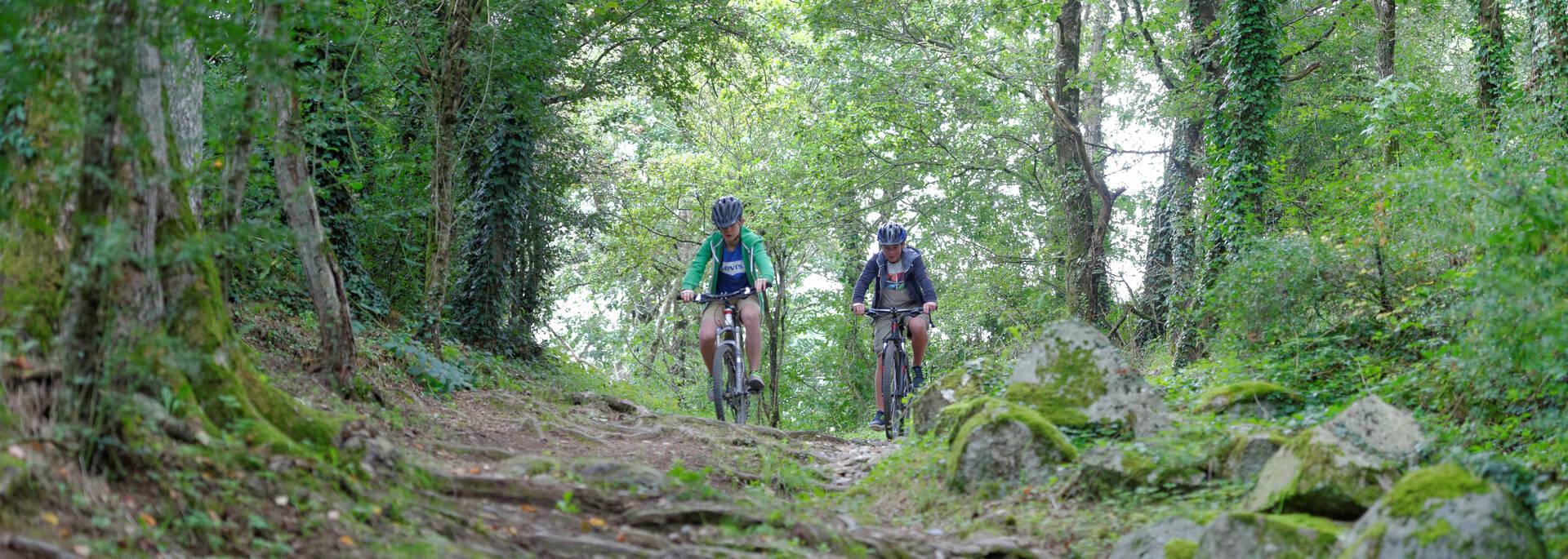 Randonnée à vélo en Argentonnais  @PWall/CD79