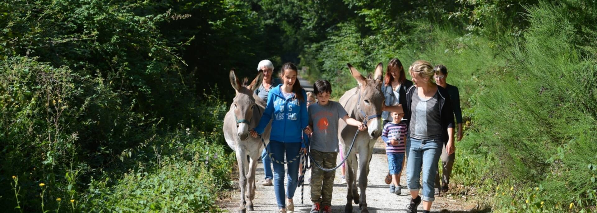 Randonnée sur la voie verte avec les ânes