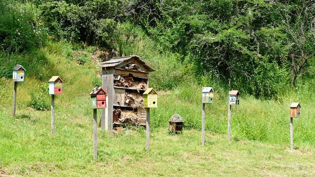 Sites naturels et espaces naturels sensibles en Bocage Bressuirais